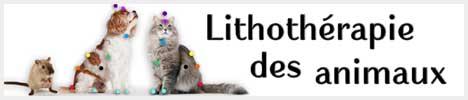 livre: lithothérapie des animaux
