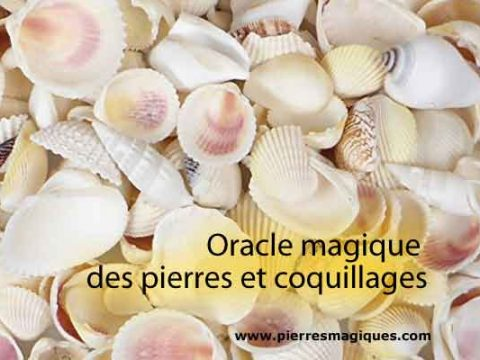 oracle magique pierres coquillages