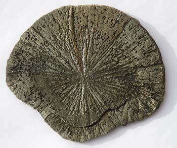 pyrite pour attirer l'argent