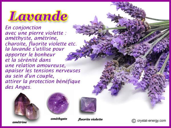 lavande et pierres violettes