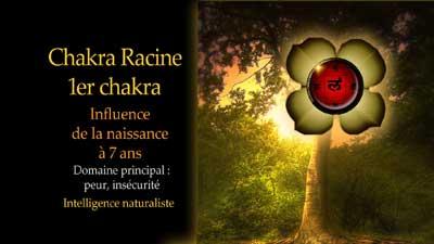 Vidéos : découvrez le fonctionnement des 7 chakras