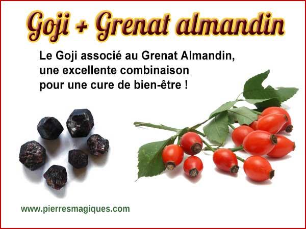 Propriétés régénératrices du Goji associé au grenat almandin