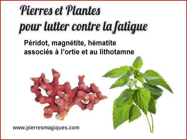 Pierres et plantes pour lutter contre la fatigue