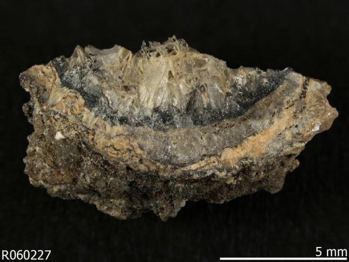 L'activité humaine créée de nouveaux minéraux aux propriétés différentes