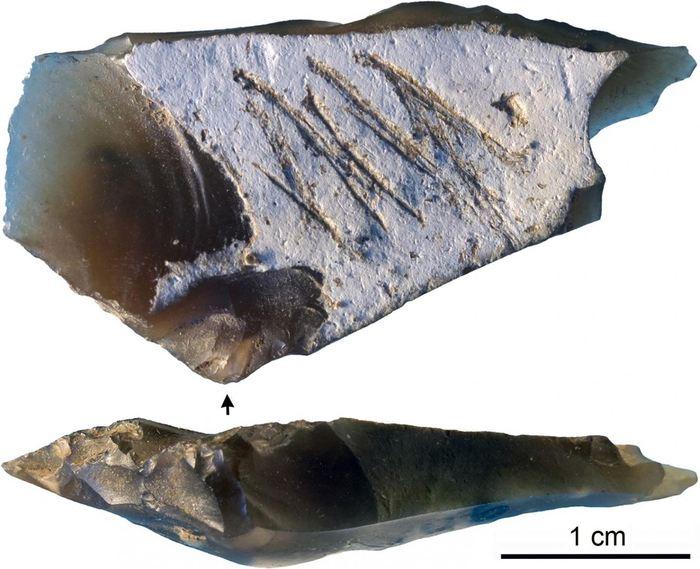 Une pierre gravée de Crimée démontre un symbolisme du Néandertal