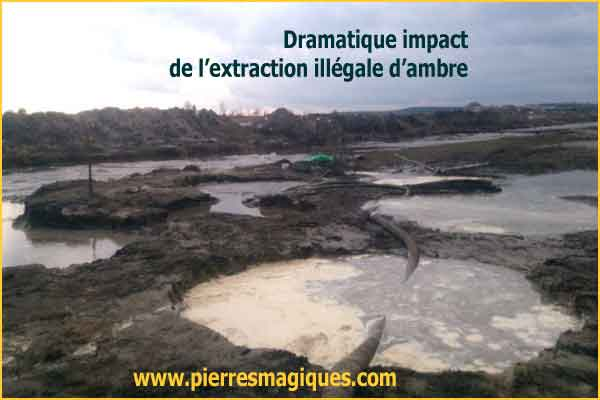 extraction ambre ukraine