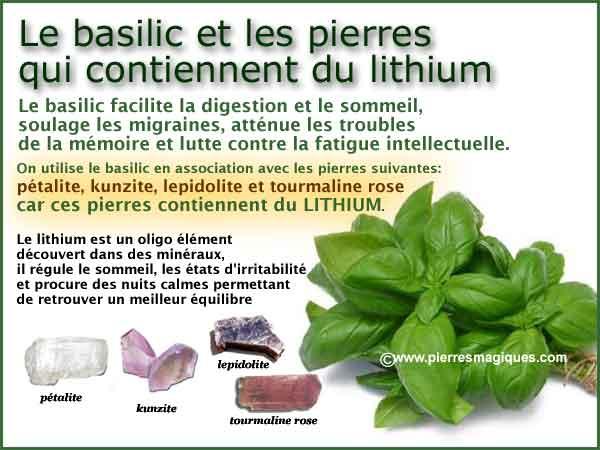 Basilic Lithium