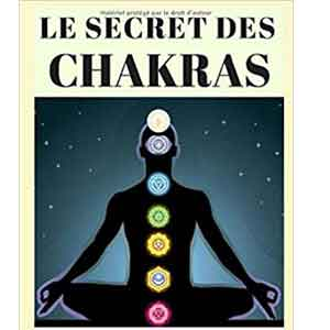 Secret Des Chakras
